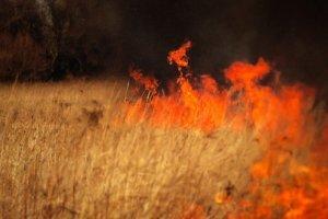 Wiosenne wypalanie traw
